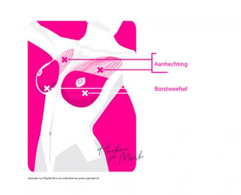Illustratie, handleiding, borsten, lichaam, vrouw